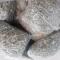 Cá cơm khô xuất khẩu Phú Yên -----[Ảnh 4]-----